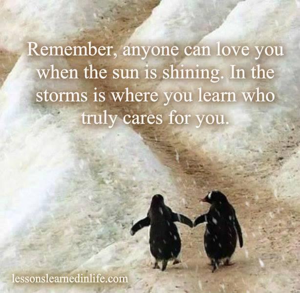 penguin.friends